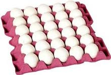 إستيراد بيض المائدة التركي من المنشأ وبأسعار منافسة