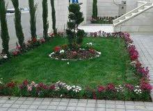 بناء شلال باربكيو فيربليس زراعة نجيل طبيعي تنسيق الحدائق صيانة الحدائق