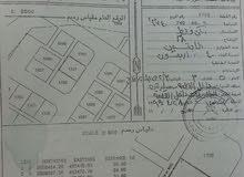 بيع ارض سكنية بديل آل عبدالسلام خط الغاز