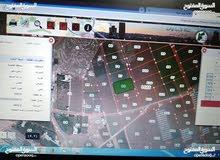 ناعور-مزرعة السامك ارض زراعيه للبيع 6402م