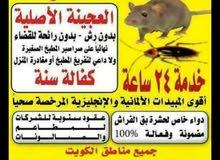 مكافحة حشرات والقوارض بأفضل المبيدات الم حصه من وزارة الصحة بأفضل رخص الأسعار