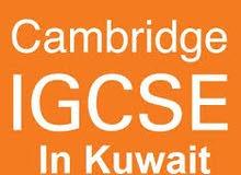 5) British Teachers (IGCSE, Learn English & IELTS)
