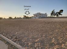 أرض للبيع 15 دقيقة من الثامن في مشروع المهندسين بالزيتونة ملاصقة للأندلسية (أراض