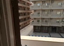 شقة مصيف مرسي مطروح مفروشة نضيفة