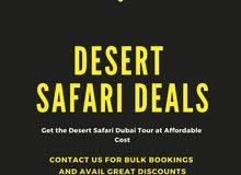 Best Desert Safari Deals Dubai