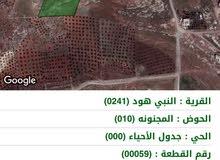 ارض جرش النبي هود قرب جامعة جرش
