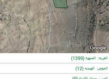 ارض 8 دنمات م -ادي موسى البتراء (طريق بيضه)
