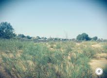 ارض للبيع كاملة مساحة 6342 متر في تاجوراء