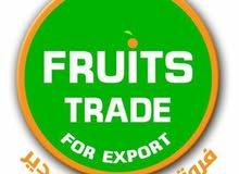 شركة فروتس تريد لتجارة الفواكه و اعمال القمسيونجية