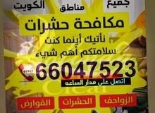 لوفيندا كلير لمكافحة الحشرات والافات  فى الكويت