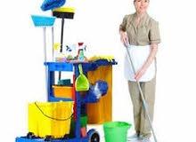 Ochiska Cleaning Services