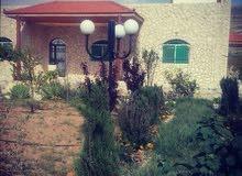 منزل مستقل للأيجار او البيع في منطقة وادي موسى(البترا)