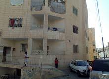 شقة للبيع الزرقاء الجديدة /شارع 16 البتراوي