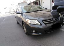 Gasoline Fuel/Power car for rent - Toyota Corolla 2016