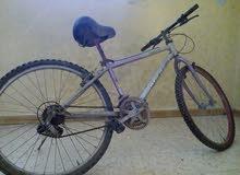 دراجة هوائية ياباني