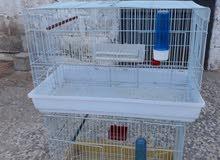 قفصين اطيور فاضيات للبيع