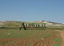 ارض للبيع في منطقة المفرق مساحة الارض 6500 م