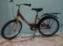 (For Sale Cycle (ages 7-14)