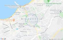 شقة للبيع بالاسكندرية
