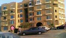 for rent apartment 2 Bedrooms Rooms - New Cairo