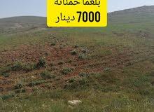 قطع أراضي في بلعما للبيع 7000د