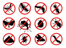 cleaning and pest control services