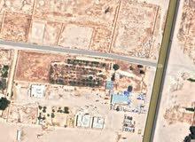 مزرعة موقع  للبيع تجارية موقع ممتاز علي طريق طبرق بعد البوابة مباشر المساحة 40*1
