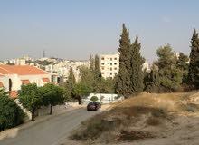 Dabouq neighborhood Amman city - 170 sqm apartment for rent