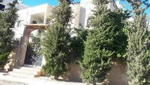 عماره السلط وادي الحلبي