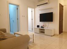 fully furnished flats in in bin Omran/ شقق مفروشة في بن عمران