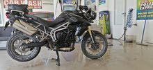 Used Triumph available for sale