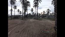 قطعة ارض للبيع في زليتن في منطة رماية