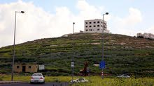 تملك قطعة ارض مساحة 500 م  مميزة موقع استراتيجي في ابو علندا ذات اطلالة قوشان مستقل