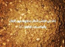 زعتر سوري لذيذ