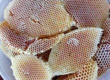 عسل بجميع انواعه