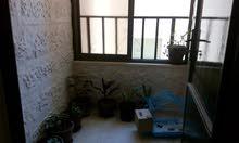 شقة طابق اول مقابل كارفور مساحة 150م
