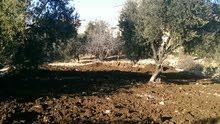 ارض جميلة في ناعور قرب شارع السلام وقصر السفير الليبي - 12 دقيقة عن الدوار السابع