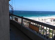 مصيف بشاطئ النخيل 2 غرفتين وريسيبشن بالتشطيب بمقدم 40 الف