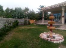 مزرعه 5دونم طابو مبستنه وتحتوي على منزل بناء حديث درجه اولى بغداد اليوسفيه