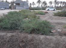 قطعة ارض زراعي للبيع مساحة 230 متر  عرض 10 متر نزال 23متر منطقة اليوبة