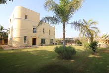 villa for rent with swimming pool at Sheikh zayed city