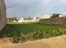 ارض للبيع في قليبية