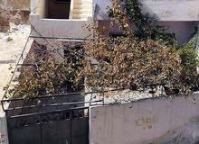 Best price 140 sqm apartment for rent in ZarqaAl ghweariyyeh