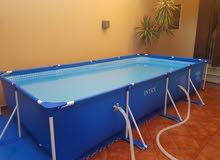 حوض سباحة ممتاز مع الأرضية والمصفي
