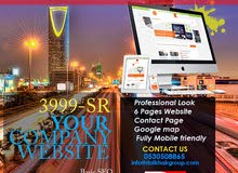 Business software, accounting software, POS, Billing software, Website, SEO, Digital Marketing