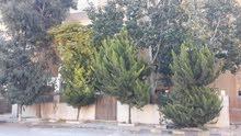 سحاب ضاحية الاميره ايمان خلف مستشفى توتنجي بجانب جامع التوحيد عماره رقم 20