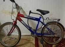 دراجة PHILPE للبيع