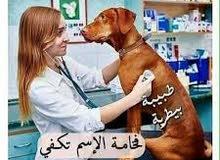طبيبه بيطريه مقيمه