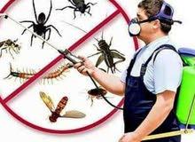 افضل شركه مكافحة حشرات