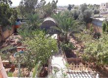 مزرعة في الغور الجوفة (الاسكان) لليجاراليومي او اسبوعي او شهري